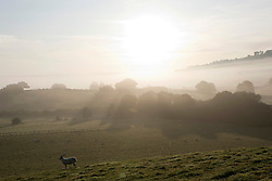 © Licensed to London News Pictures. 19/09/2019. Builth Wells, Powys, UK. Fog hangs in the valleys early in the morning near Builth Wells in Powys, after a cold night with temperatures dropping to around 6 deg C. Photo credit: Graham M. Lawrence/LNP