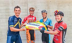 05.07.2017, Altheim, AUT, Ö-Tour, Österreich Radrundfahrt 2017, 3. Etappe von Wieselburg nach Altheim (226,2km), im Bild Stefan Denifl (AUT, Aqua Blue Sport), Felix Grossschartner (AUT, CCC Sprandi Polkowice), Riccardo Zoidl (AUT, Team Felbermayr Simplon Wels), Hermann Pernsteiner (AUT, Amplatz BMC) // Stefan Denifl (AUT, Aqua Blue Sport), Felix Grossschartner (AUT, CCC Sprandi Polkowice), Riccardo Zoidl (AUT, Team Felbermayr Simplon Wels), Hermann Pernsteiner (AUT, Amplatz BMC) during the 3rd stage from Wieselburg to Altheim (199,6km) of 2017 Tour of Austria. Altheim, Austria on 2017/07/05. EXPA Pictures © 2017, PhotoCredit: EXPA/ JFK