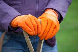 Orange gardening gloves holding spade