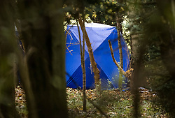 © Licensed to London News Pictures. 24/10/2020. Watlington Hill, UK. A police evidence tent is seen in woodland on Watlington Hill after the body of a woman was found on Friday 23rd October. An injured man was arrested by police near by after a man was seen acting suspiciously in nearby pub. Photo credit: Peter Macdiarmid/LNP