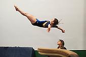 Rebel Invitational Gymnastics Meet 12/12/15