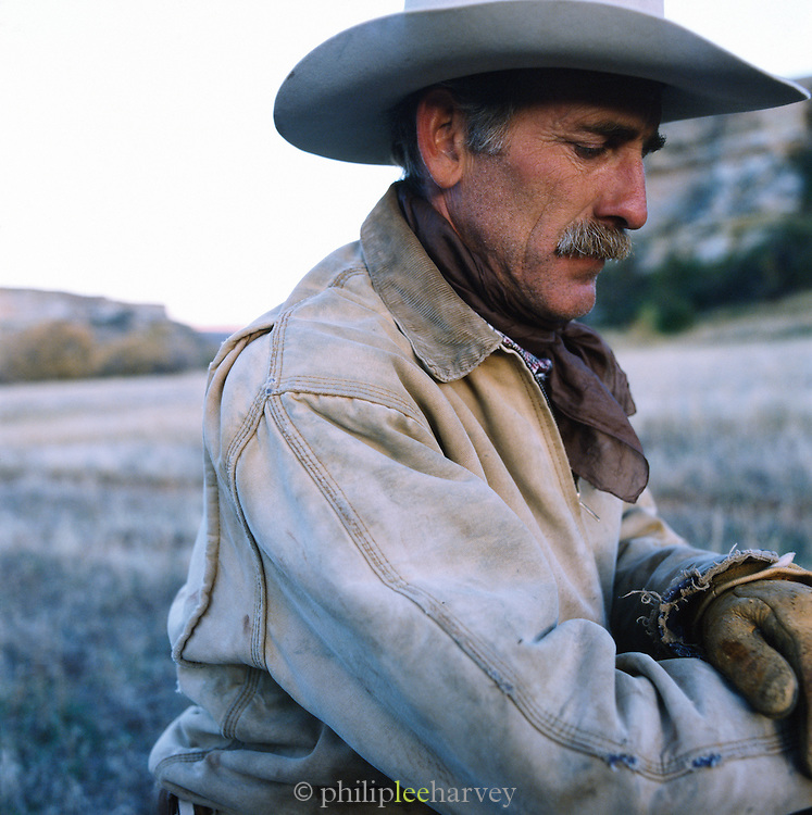 A Cowboy on a ranch in Montana, USA