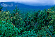 Afternoon fog over Bald Mountain, North Carolina