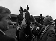 07/08/1980<br /> 08/07/1980<br /> 07 August 1980<br /> R.D.S. Horse Show: John Player International, Ballsbridge, Dublin.  Malcolm Pyrah (Great Britain) on Towerlands Anglezarke won the John Player sponsored competition.