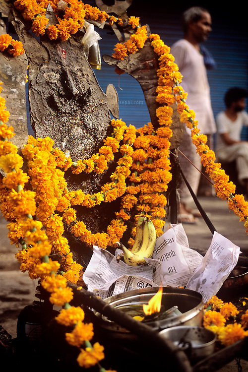 A black iron idol of the goddess Shani is taken out to the streets of Old Delhi on Saturday to collect money in the name of the deity, the patron of the day (Saturday is Shanivar in Hindi)