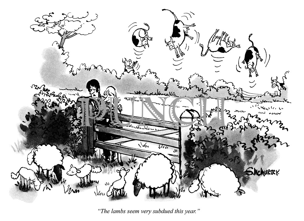 """""""The lambs seem very subdued this year."""""""