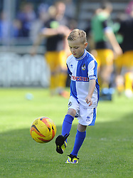 Mascot - Photo mandatory by-line: Joe Meredith/JMP - Mobile: 07966 386802 03/05/2014 - SPORT - FOOTBALL - Bristol - Memorial Stadium - Bristol Rovers v Mansfield - Sky Bet League Two