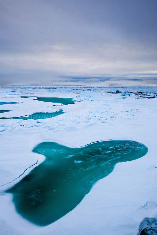 """Arctic Sea Ice, Fram Strait, between Greenland and Svalbard, September 2009. In August 2012, Arctic sea ice hit a record minimum - this will affect weather and the global climate, as the ice cap reflects much of the sun's solar energy back into to space. With sea ice melting away, the dark water below absorbs more solar energy, which in turn causes more melting. This mage can be licensed via Millennium Images. Contact me for more details, or email mail@milim.com For prints, contact me, or click """"add to cart"""" to some standard print options."""