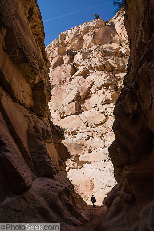 Hike Cottonwood Wash Narrows, a sandstone slot canyon in Grand Staircase-Escalante National Monument, Utah, USA. Families enjoy this easy walk 3 miles round trip with 340 feet gain. The Cottonwood Wash Narrows slice through the Cockscomb, which was uplifted 65 million years ago as part of the East Kaibab Monocline, a major feature of the Colorado Plateau. Directions: On Highway 89, drive 10 miles west of Big Water, and between mileposts 17-18, turn north on Cottonwood Canyon Road (#400) then drive 25 miles to Cottonwood Narrows North Trailhead sign (located 12.5 miles southeast of Kodachrome Basin State Park).