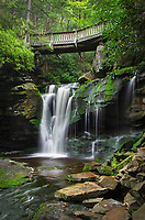 First or Upper Elakala Falls, Blackwater Falls State Park, West Virginia