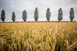 Peloton near Murska Sobota during 1st Stage of 25th Tour de Slovenie 2018 cycling race between Lendava and Murska Sobota (159 km), on June 13, 2018 in  Slovenia. Photo by Vid Ponikvar / Sportida