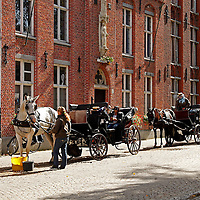 Europe, Belgium, Brugges. Horse-drawn carriage of Brugges.