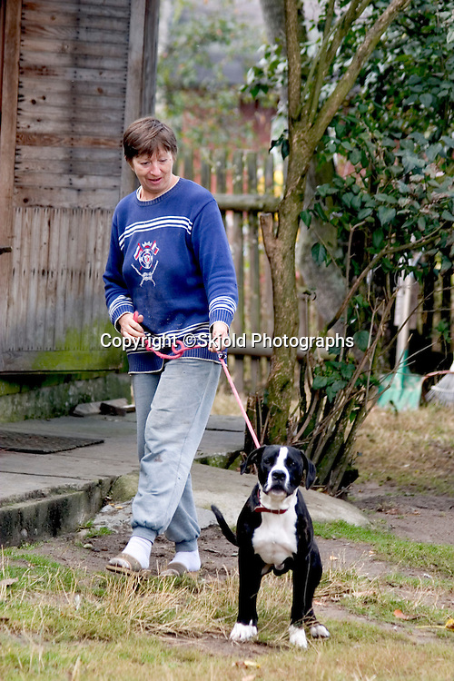 Polish farm woman holding back dog on leash.  Zawady  Central Poland