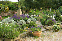 well planted flower bed in a country garden