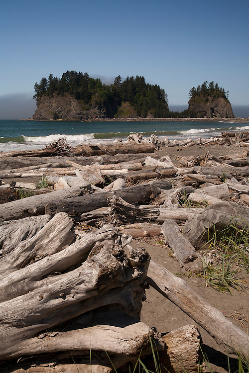North America, United States, Washington, La Push, driftwood on First Beach with sea stacks in distance. Within Olympic National Park.