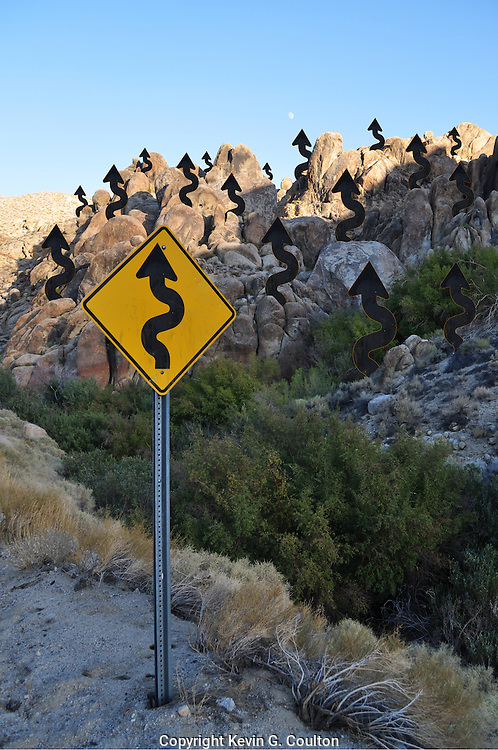 Humorous photograph of a CURVY ROAD AHEAD warning sign with a squiggley arrow forest in the background.