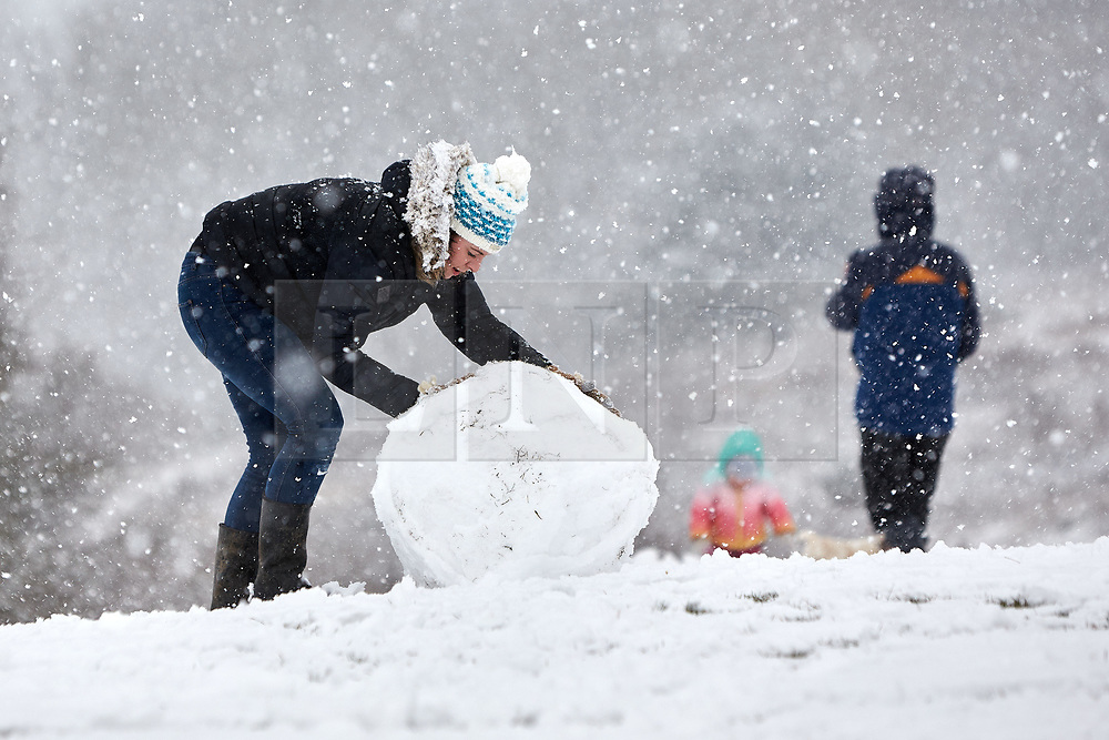 © Licensed to London News Pictures. 24/01/2021. Wendover, UK.  A family make a snowman on Coombe Hill as heavy snow falls in the Chilterns. The Met office has issued a yellow warning for snow covering most of the south of England until 23:59 tonight.   Photo credit: Cliff Hide/LNP