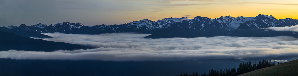 Fog filled Elwha River Valley panorama at twilght, August, view from Hurricane Ridge, Olympic National Park, Clallam County, Olympic Peninsula, Washington, USA