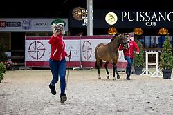 027, Tongerenhof Cullinan<br /> Hengstenkeuring Brp - Azelhof - Lier  2021<br /> © Hippo Foto - Dirk Caremans<br />  14/04/2021