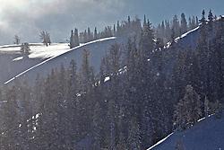 Snowy Landscape, Teton Pass, Jackson Hole, Wyoming