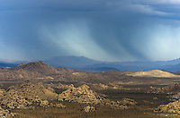 I don't know how much of this rain was hitting the ground. It was in the direction of Yucca Valley from Ryan Mountain.<br /> <br /> Date Taken: August 20, 2014