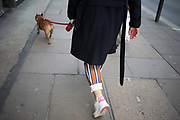 Matching trousers and dog in London, England, United Kingdom. Its a common sight to see a dog and owner combination which is almost like a fashion accessory.