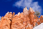 Rock formations and fresh powder along the Navajo Loop, Bryce Canyon National Park, Utah