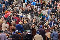 Ouzbekistan, Region de Kachkadaria, Bouzkachi ou Buzkashi, les cavaliers se disputent le cadavre d'un mouton // Uzbekistan, Kachka Daria province, Buzkashi, horsemen fighting for a sheep body