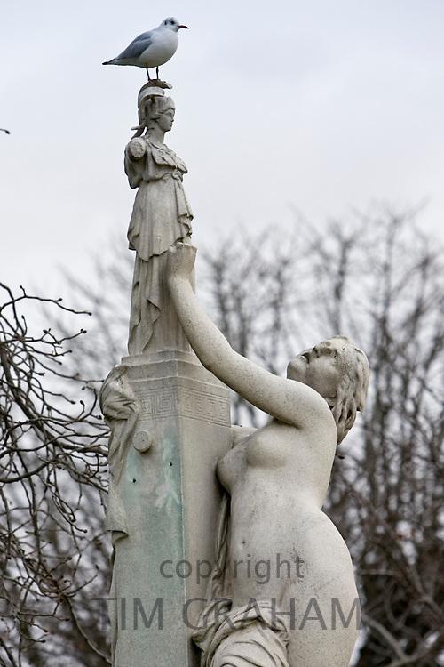 Seagull perches on female sculpture in Jardin des Tuileries, Paris, France