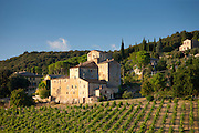 Tuscan architecture and vineyard at Sovicille near Siena in Tuscany, Italy RESERVED USE - NOT FOR DOWNLOAD - FOR USE CONTACT TIM GRAHAM