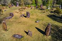 France, Morbihan (56), Monteneuf, Le domaine mégalithique des Pierres droites, les menhirs de Monteneuf // France, Morbihan (56), Monteneuf, the megalithic domain of straight stones, the menhirs of Monteneuf