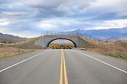 Wildlife Bridge overpass on CO Hwy 9, south of Kremmling, Colorado.