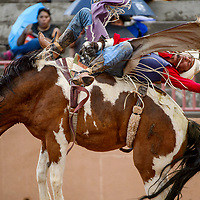 Bareback rider Jacob Etsitty makes a 72-point ride during the Gallup Intertribal Indian Ceremonial rodeo at Red Rock Park in Gallup Saturday.
