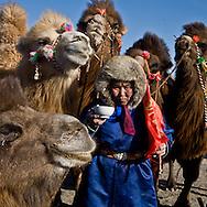 Mongolia. portrait of children during the Camel festival. Gobi desert.  Bulgan -