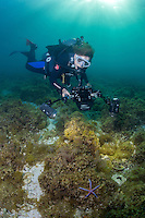 Sylvia Earle explorers the water of the Gulf of California Mexico