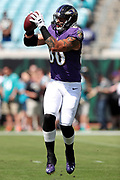 Baltimore Ravens tight end Crockett Gillmore (80) jumps and catches a pass while warming up before the 2016 NFL week 3 regular season football game against the Jacksonville Jaguars on Sunday, Sept. 25, 2016 in Jacksonville, Fla. The Ravens won the game 19-17. (©Paul Anthony Spinelli)