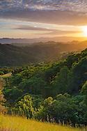 Green hills in Spring, Mount Diablo State Park, Contra Costa County, California