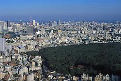Tokyo City Scapes