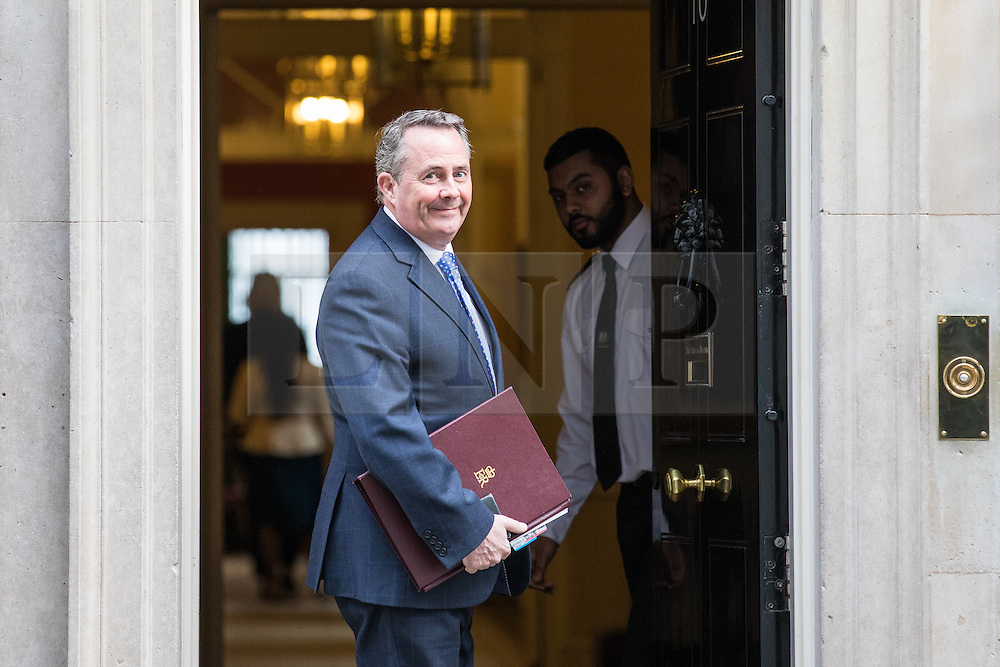 © Licensed to London News Pictures. 07/03/2017. London, UK. Secretary of State for International Trade Liam Fox on Downing Street. The government is set to deliver the budget tomorrow, Wednesday 8 March 2017. Photo credit: Rob Pinney/LNP