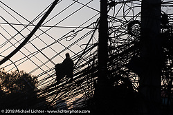 A monkey navigates a typical mess of electrical wires that wind through Kathmandu, Nepal. Tuesday, November 6, 2018. Photography ©2018 Michael Lichter.
