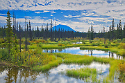 Tarfu Creek and Coast Mountains in the background<br /> Atlin Road north of British Columbia - Yukon Border<br /> Yukon<br /> Canada