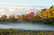 Morning fog in the Middletown, N.Y., on Oct. 8, 2020.