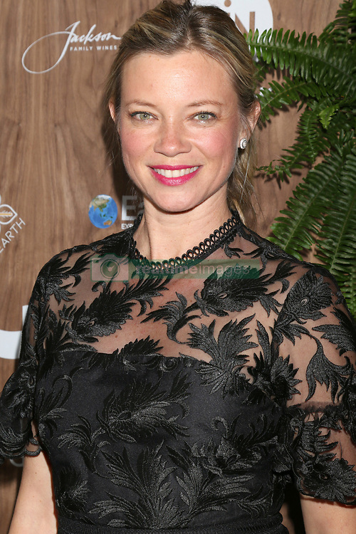 February 20, 2019 - Beverly Hills, CA, USA - LOS ANGELES - FEB 20:  Amy Smart at the Global Green 2019 Pre-Oscar Gala at the Four Seasons Hotel on February 20, 2019 in Beverly Hills, CA (Credit Image: © Kay Blake/ZUMA Wire)