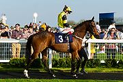 The Daley Express ridden by Franny Norton and trained by Ronald Harris  - Ryan Hiscott/JMP - 19/04/2019 - PR - Bath Racecourse- Bath, England - Race 7 - Good Friday Race Meeting at Bath Racecourse