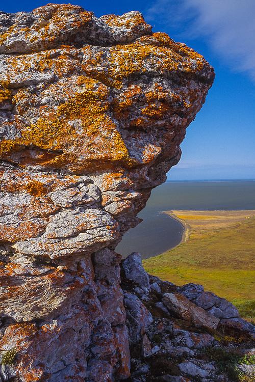 Rock outcrop with lichens, Krusenstern Lagoon, Cape Krusenstern National Monument, Alaska, USA