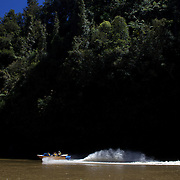 A jet boat from Bridge to Nowhere tours  heads along the Whananui River in the Whanganui National Park..The park encloses the wild upper and middle reaches of the Whanganui River, which is New Zealand's longest navigable waterway. Beginning beneath the shadow of the central plateau's giant volcanoes, the 329 kilometre river winds its way to the Tasman Sea through an endless procession of forested valleys and hills. 30th December 2010. Photo Tim Clayton..