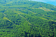 Green hills of the Peace River Forest<br /> Peace River<br /> Alberta<br /> Canada