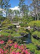 Earl Burns Miller Japanese Garden in Long Beach