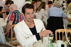DAVID GANDY at the Boujis hospitality at the Audi International Polo at Guards Polo Windsor Great Park, Egham, Surrey on 28th July 2013.
