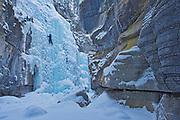 Ice climber in Maligne Canyon, Jasper National Park, Alberta, Canada